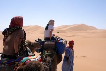 Maroc 239