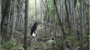 樹ギター演奏_convert_20160226010809