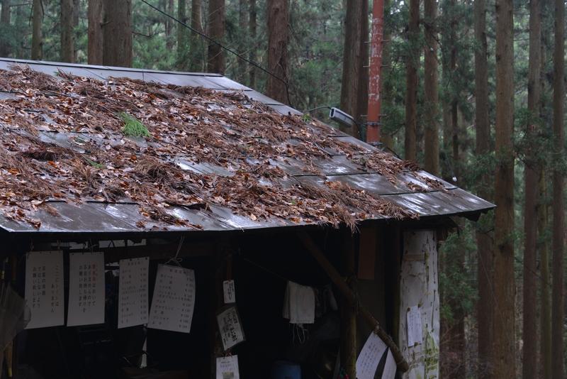 登山道の茶屋-4
