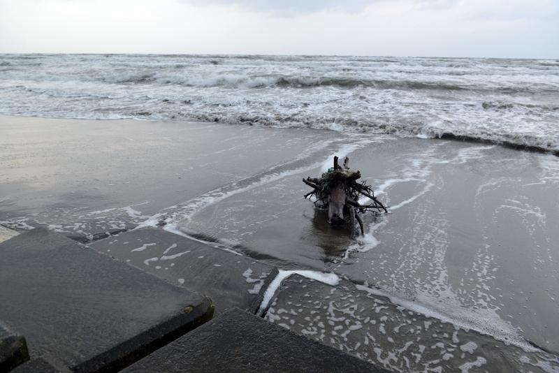 波に洗われて-2