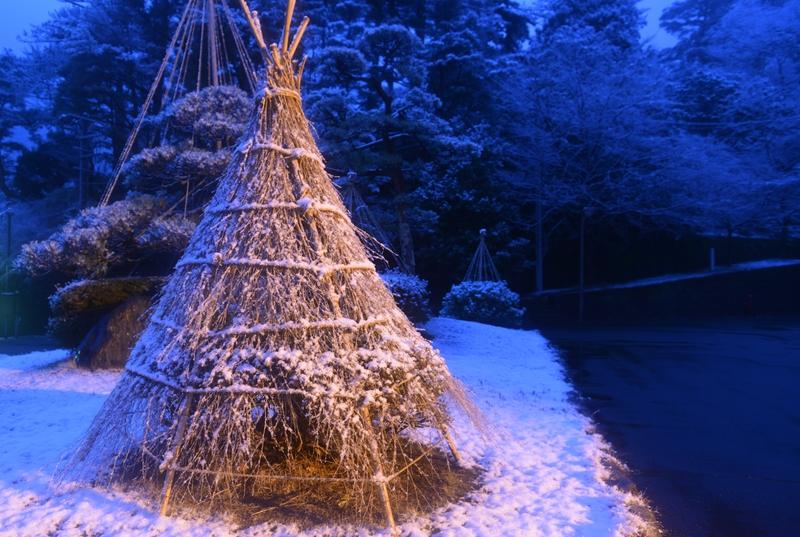 雪化粧 ライトアップ-4