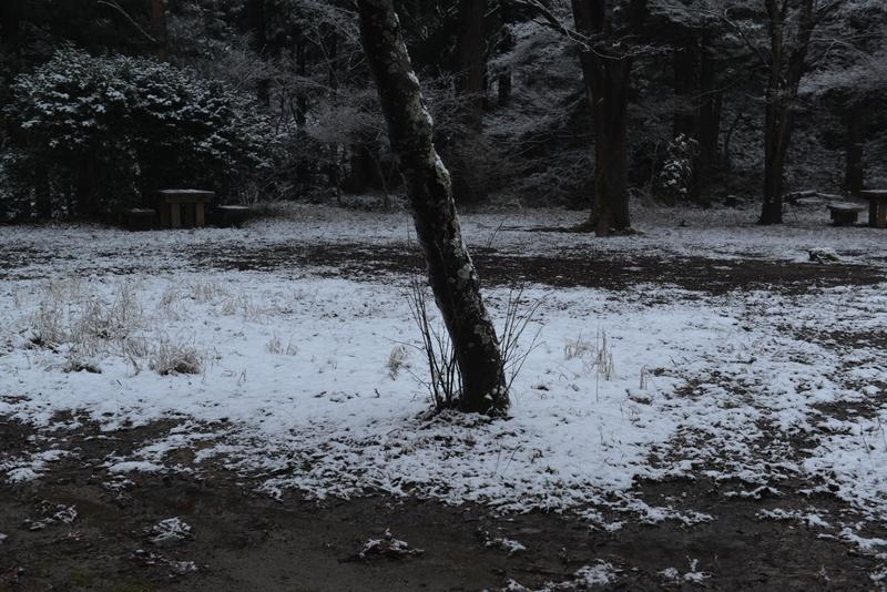雪化粧 公園-1