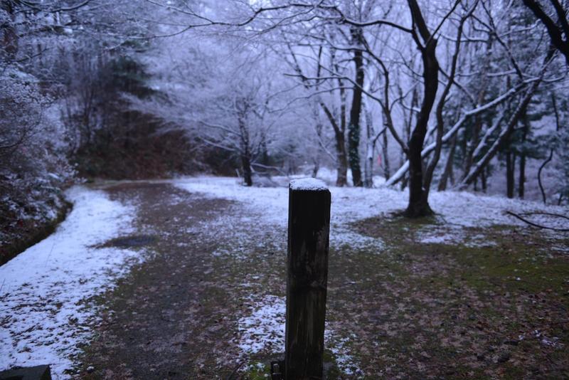 雪化粧 公園-2
