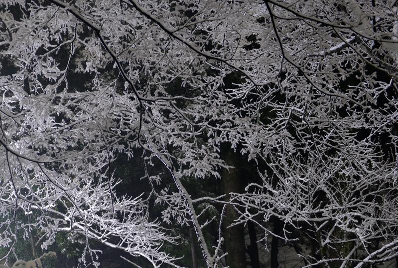 本格的な雪-3