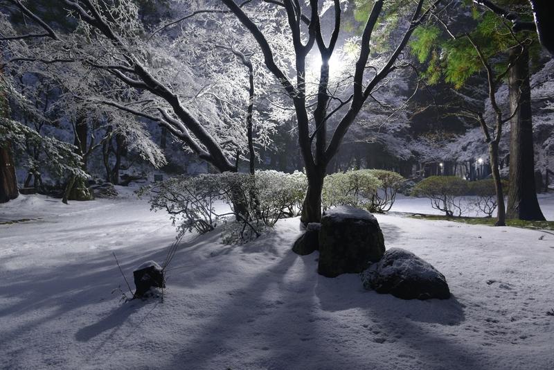 雪の公園 街灯-1