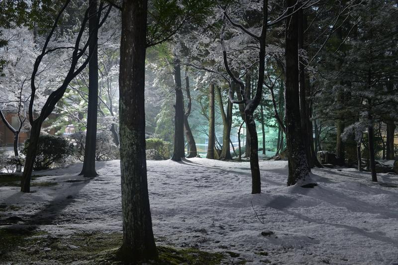 雪の公園 街灯-4