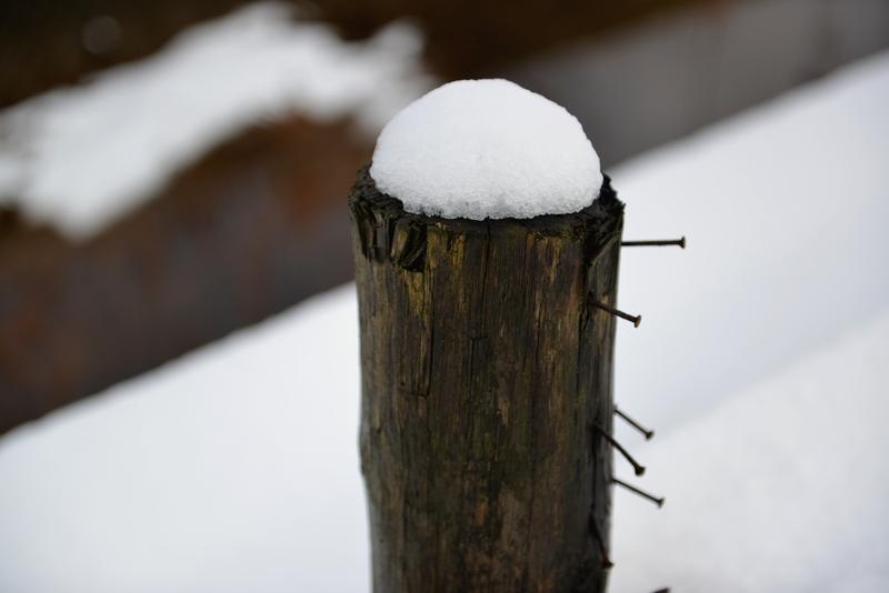 昼時の雪-4