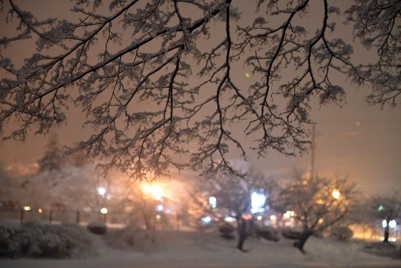 雪の公園 夜-2