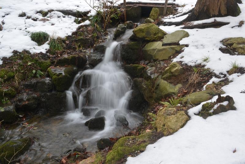 公園内の滝 冬編-3