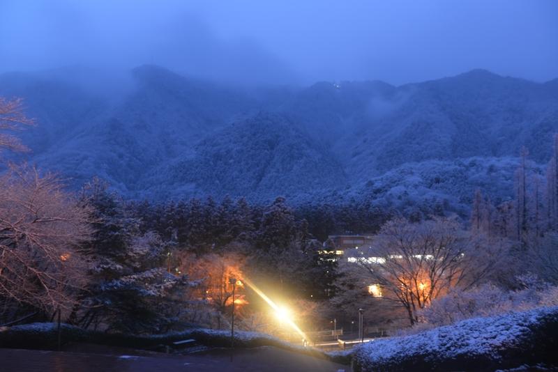厳冬の弥彦-1