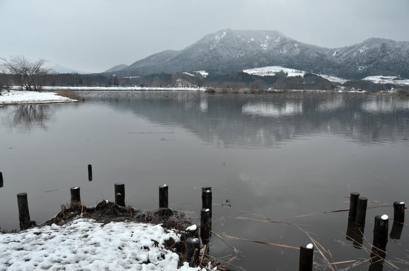 上堰潟公園から角田山-1