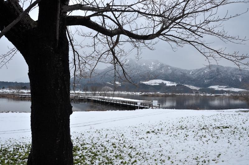 上堰潟公園から角田山-3