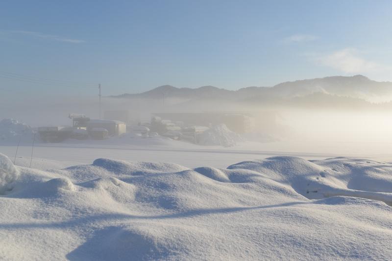 朝の霧-1