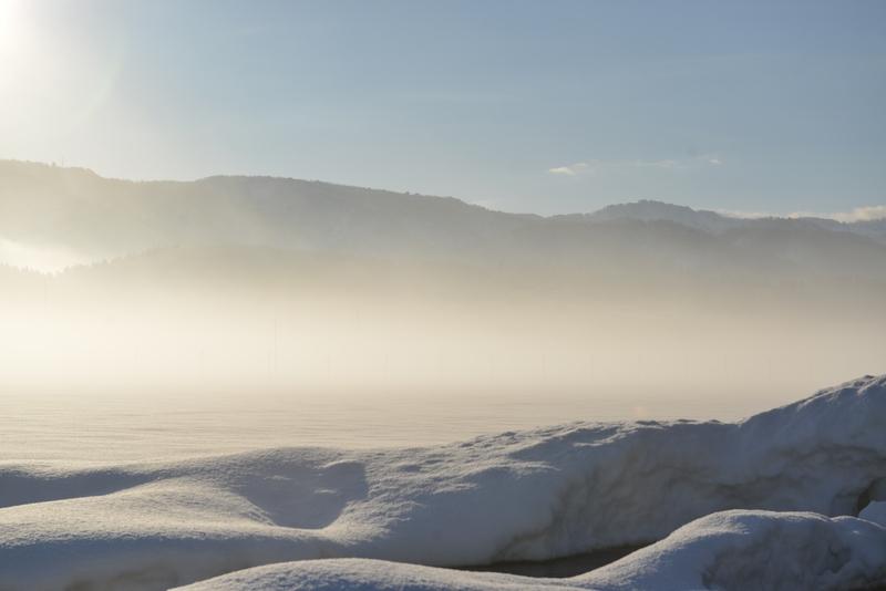朝の霧-2