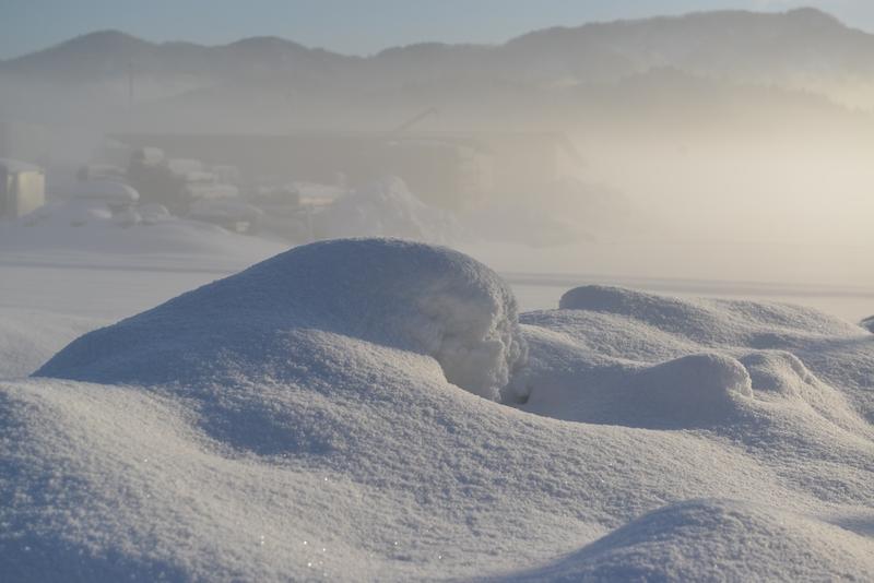 朝の霧-4
