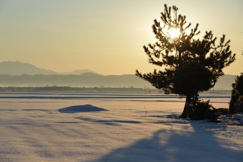 雪原の朝-2