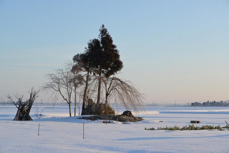 雪原の朝-3