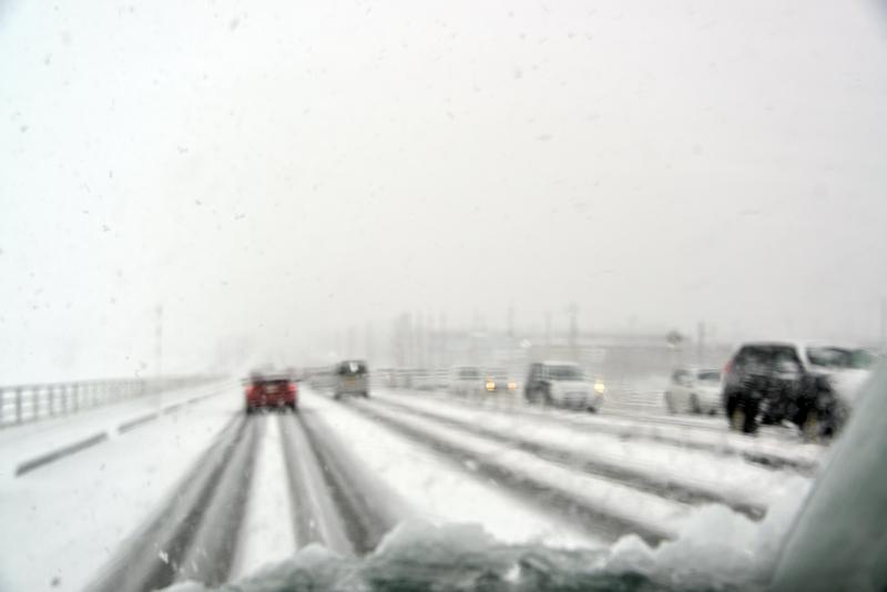 今朝も雪-1