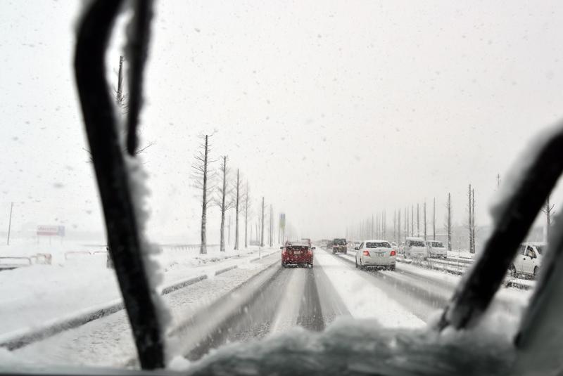 今朝も雪-3