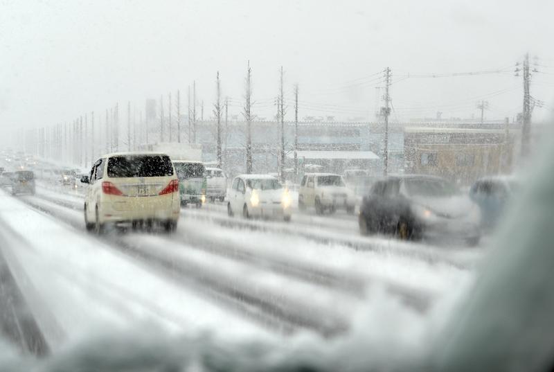 今朝も雪-4