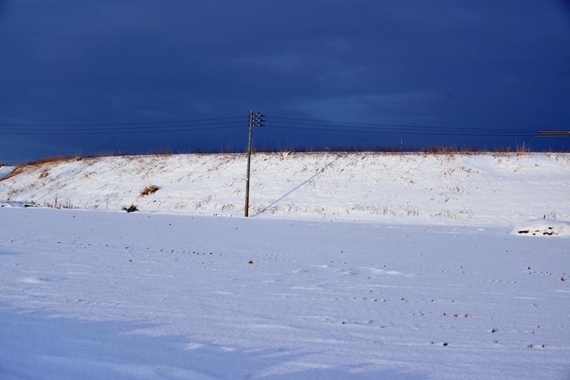 雪の土手-2