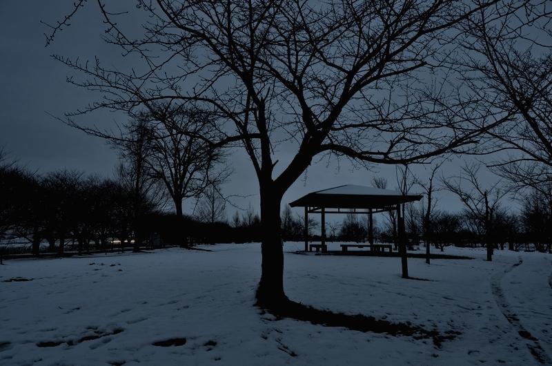 公園の夕暮れ-1