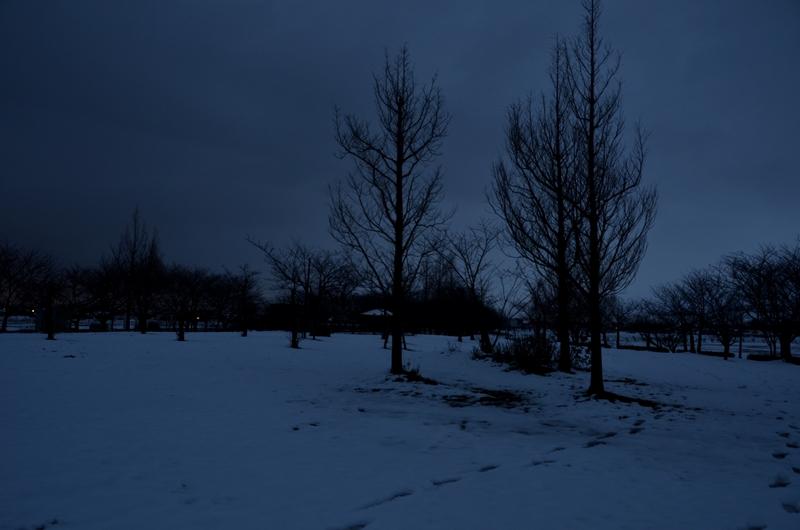 公園の夕暮れ-4