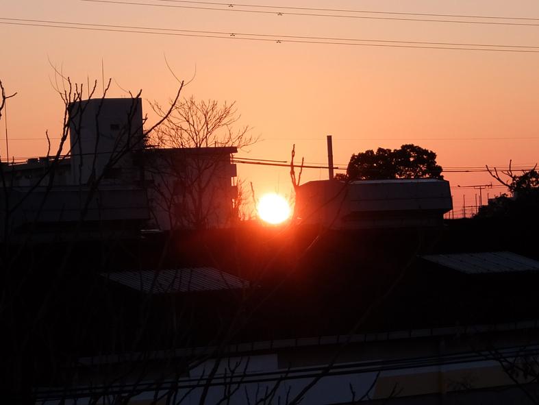 初日の出-c