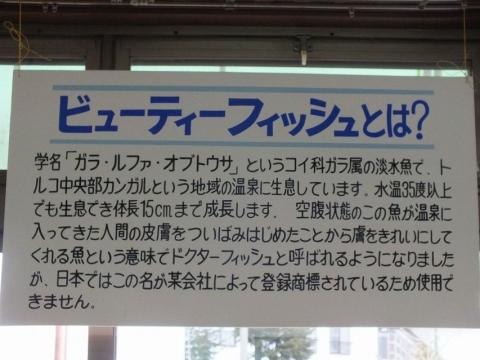 kusatsu-1_29.jpg