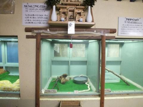 kusatsu-1_45.jpg