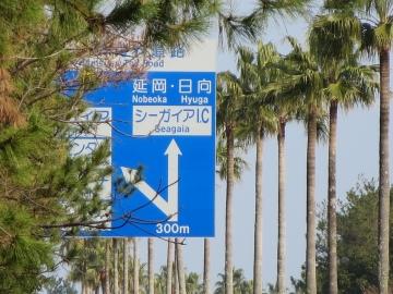 宮崎空港からシーガイアまでのルートのあるお店