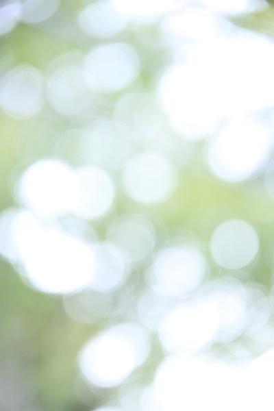 photolesson-6e.jpg