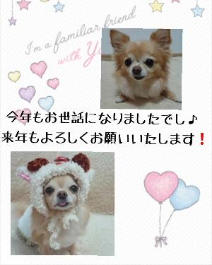 blog2015123101.jpg