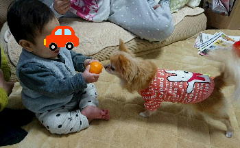 blog2016012205.jpg