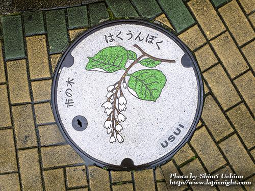 東京都田無市 カラーマンホール