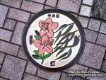 カラーマンホール -東京都中央区-