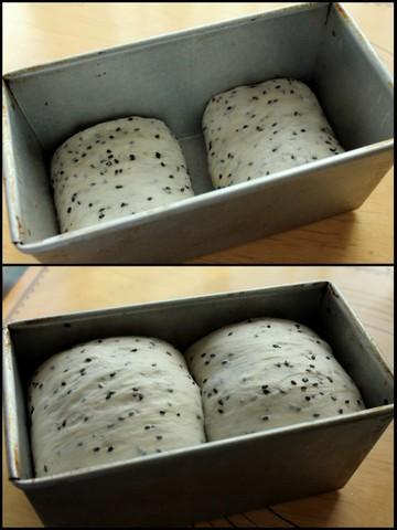 15.12.05黒ごま食パン2