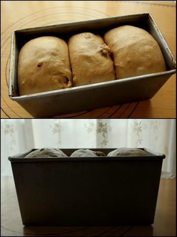 16.02.27黒糖くるみ食パン1