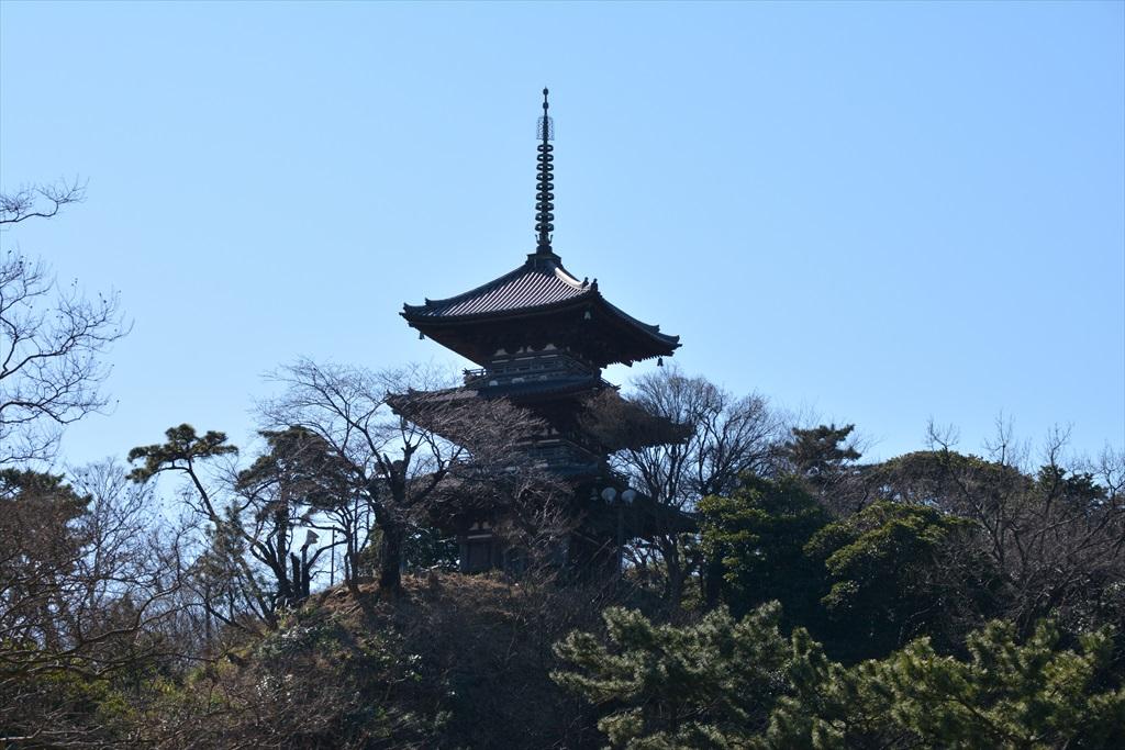 鶴翔閣の近くから見た三重塔