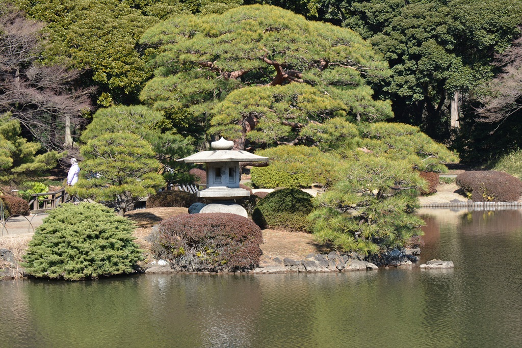 新宿御苑の上の池とその付近_2