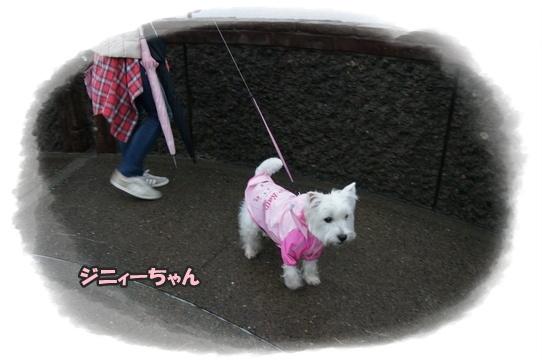 ashizurimisaki3