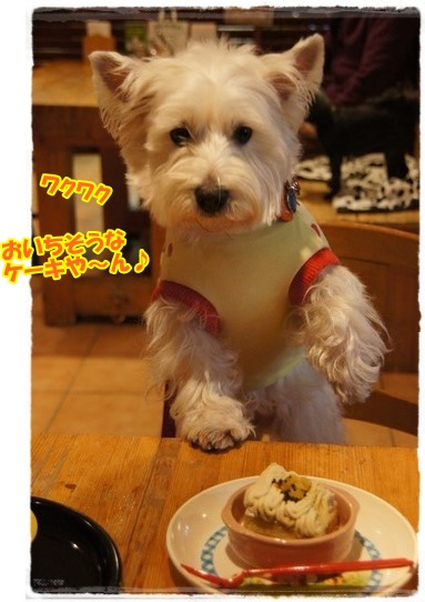 cafe3_20160121233019d4d.jpg