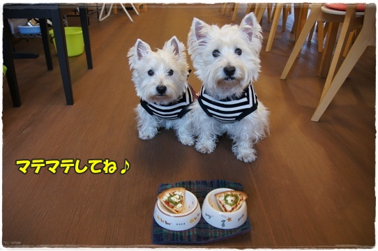 cafe4_2016022018551845b.jpg