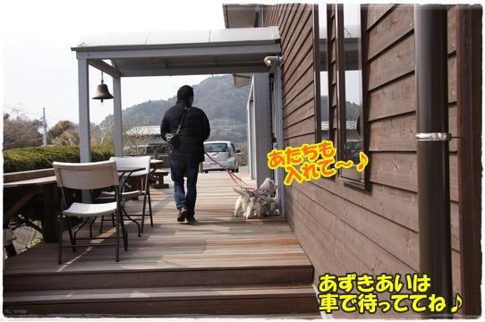 cafe4_20160308182203de1.jpg