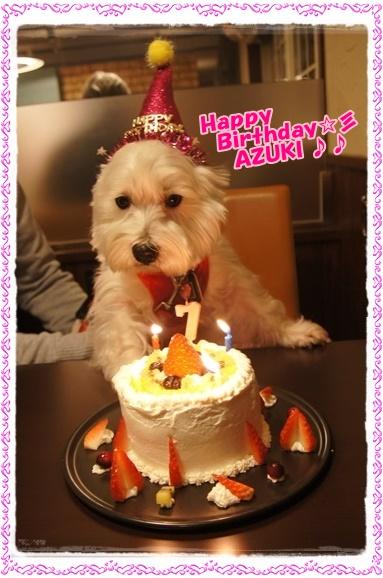 cake1_20160102190650436.jpg