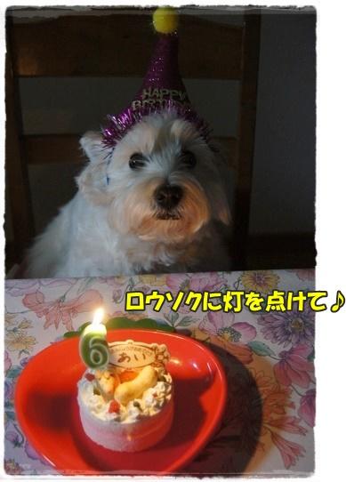 cake2_201601281813435f1.jpg