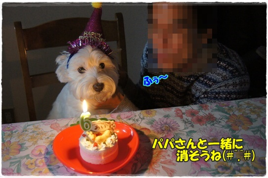 cake3_20160128181343aec.jpg
