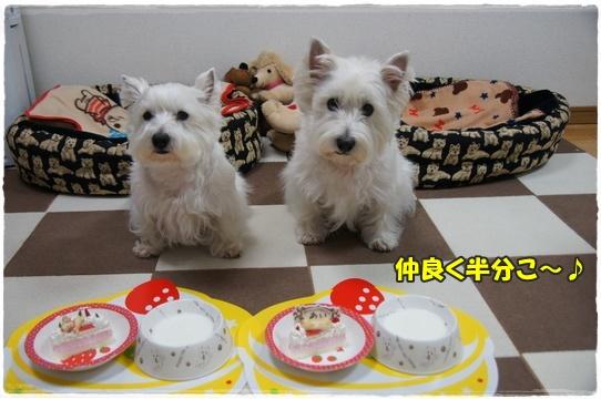 cake4_20160128183933f65.jpg