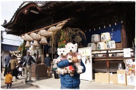hatsumoude9.jpg