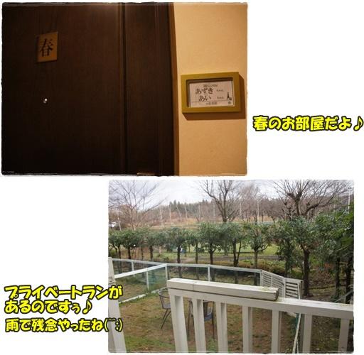 room_201601021838222f9.jpg